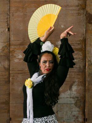 Blusa Flamenca Petúnia Preta