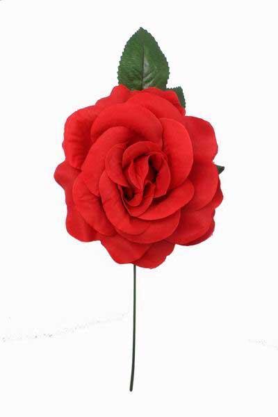 Flor espanhola vermelha